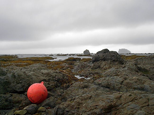Buoy on the Beach
