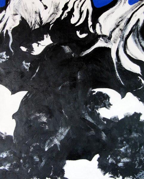 Crow Shadows Below Tree