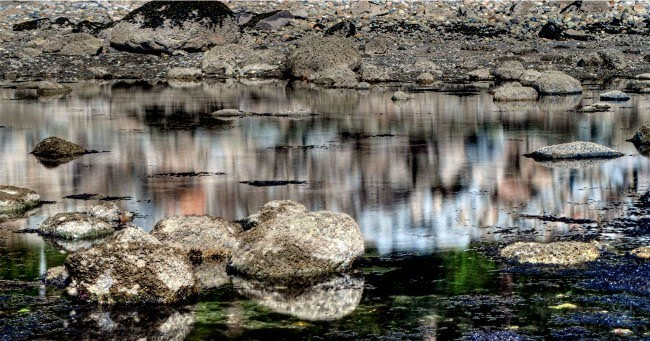 Rocky Reflections